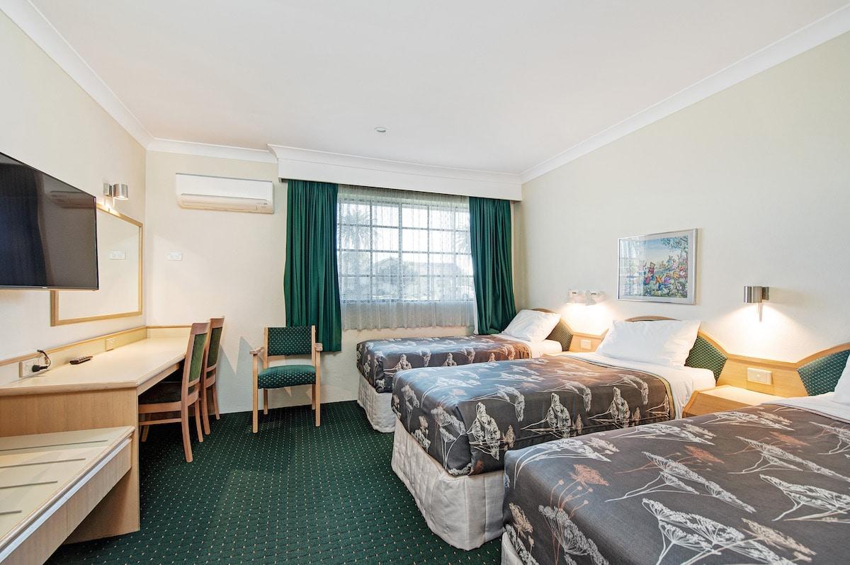 2 Bedroom Family Room (1 Queen & 3 Single Beds)